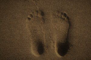 sandy foot prints - reflexology essex